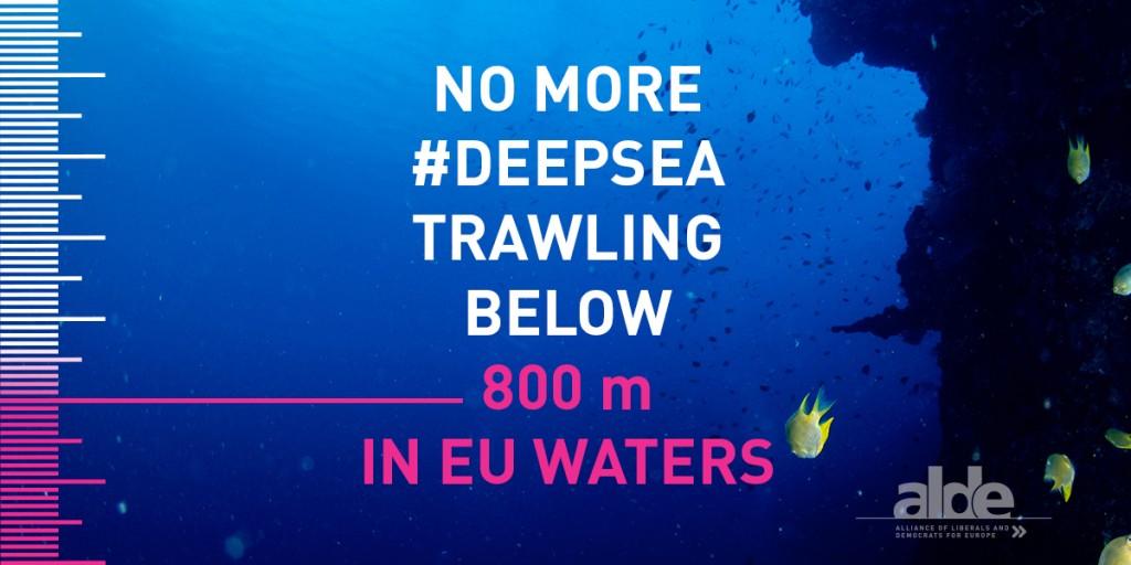 deepsea
